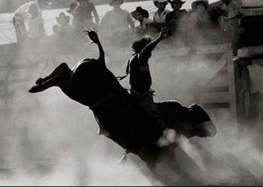 Barracão – Chegou o dia; Rodeio Country começa hoje (03)