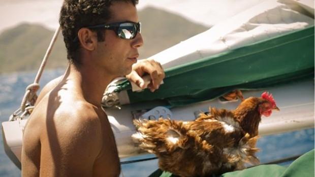 Galinha vira sensação na web ao dar volta ao mundo em barco com dono