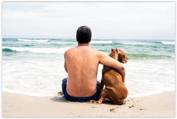 Banhista incomodado com encontro de cães na praia chama a Policia Militar