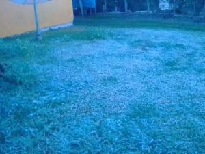 Frio no Sul do Paraná