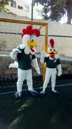Galo Futsal anuncia começo de temporada com amistoso contra gigante nacional
