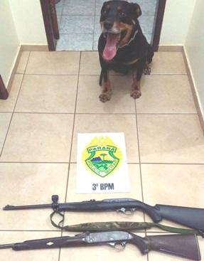 PM apreende armas de fogo em Clevelândia