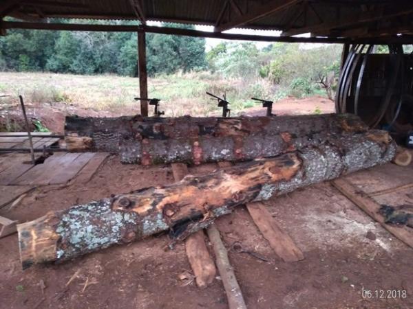 Polícia Ambiental localiza serraria clandestina