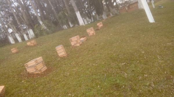 Barracão – Vândalos destroem bancos no Campo do Palmeirinha