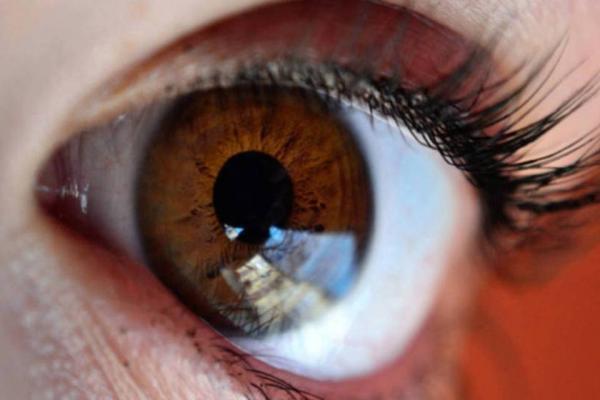 Pesquisadora brasileira usa terapia gênica em busca de novo tratamento contra o glaucoma