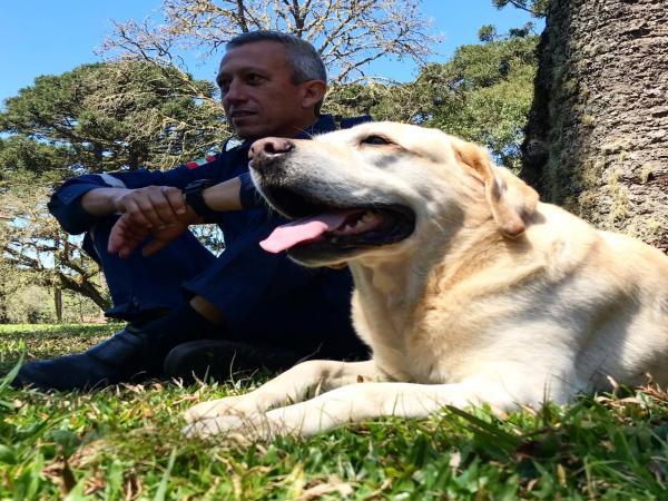 Primeiro cão salva-vidas de SC é aposentado pelos bombeiros