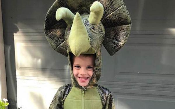 Menino que perdeu dinossauros em incêndio recebe mais de 100 brinquedos pelos correios