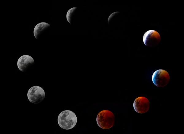 Eclipse lunar 2019: veja fotos do fenômeno
