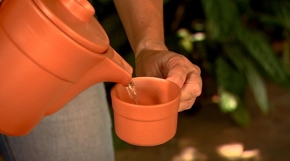 Chás podem ajudar a amenizar alguns problemas de saúde — Foto: Terra da Gente