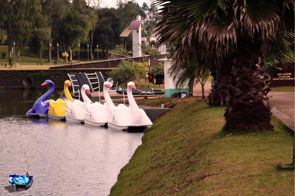 Pedalinhos no ponto de embarque e desembarque/Foto:Marcos Prudente