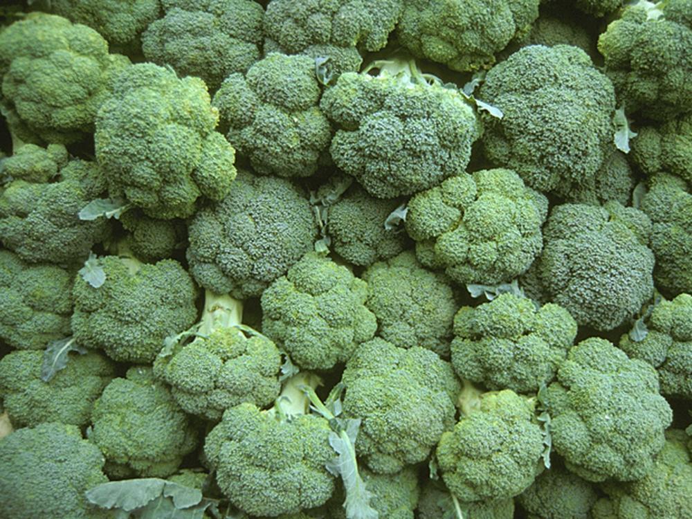 Brócolis é rico em vitamina A — Foto: Laurence Simon/TIPS/Photononstop/AFP